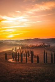 Wallbound-'Italian-Sunset'---Jarno-Cobbaert
