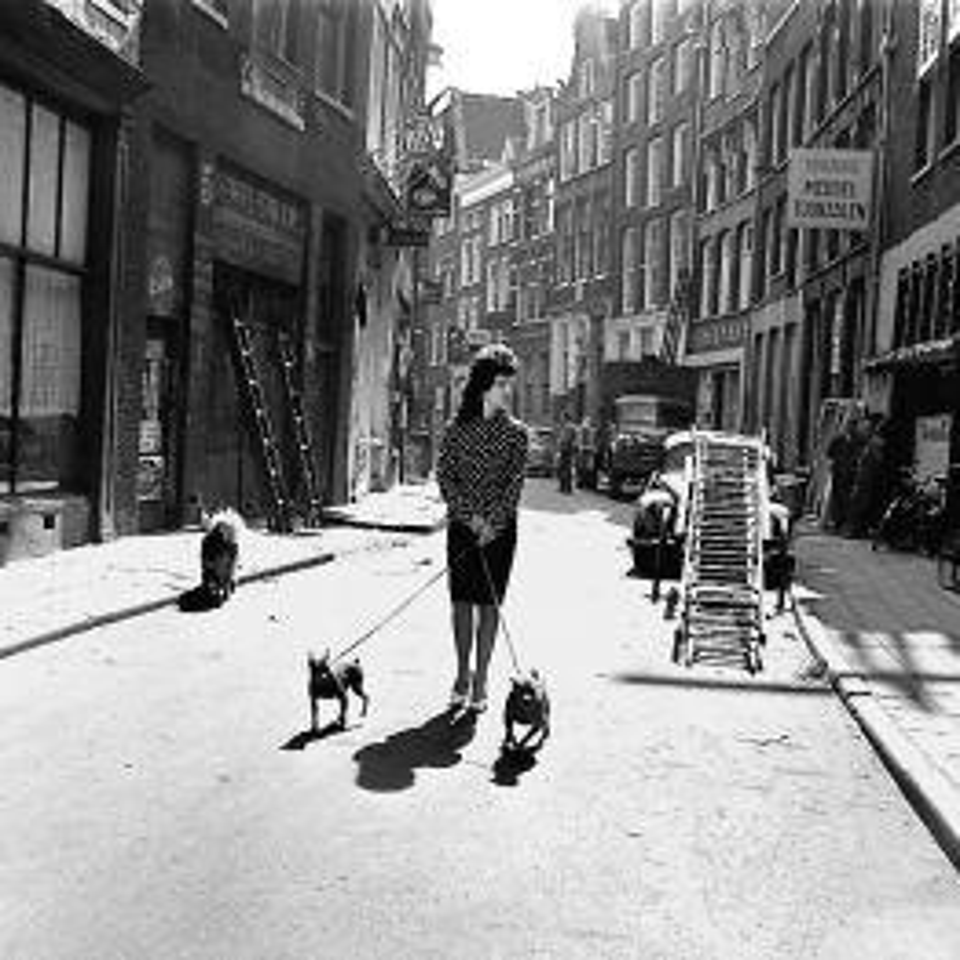ANP-Fotowinkel---Dame-wandelt-met-hondjes-in-Warmoestraat